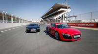 audi-r8-v10-supercar-thrill-drive-in-dubai-in-dubai-220677