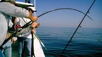 deep-sea-fishing-off-the-coast-of-dubai-in-dubai-319852