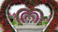 dubai-fairyland-sights-miracle-gardens-the-butterfly-garden-and-in-dubai-264183.jpg