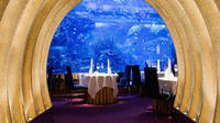 gourmet-dinner-at-al-mahara-in-burj-al-arab-in-dubai-with-private-in-dubai-200670