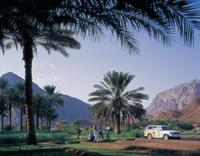 hatta-heritage-village-and-uae-desert-tour-by-4x4-from-dubai-in-dubai-412974