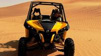 morning-dune-buggy-adventure-from-dubai-in-dubai-264039