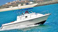 private-dubai-sightseeing-cruise-tour-in-dubai-342510