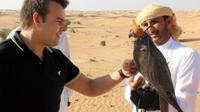 private-tour-dubai-falconry-experience-with-wildlife-drive-and-in-dubai-208326.jpg