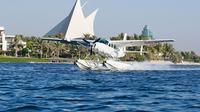 seaplane-tour-and-al-maha-wildlife-drive-from-dubai-in-dubai-374135