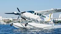 seaplane-tour-to-ras-al-khaimah-from-dubai-with-private-mountain-in-dubai-374909