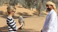 small-group-dubai-interactive-falconry-experience-and-wildlife-drive-in-dubai-208328